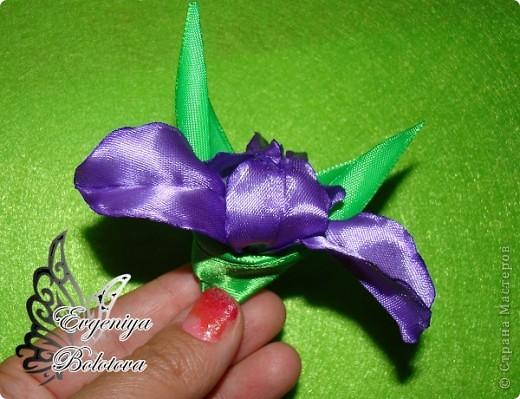 Вот такой цветок я предлагаю вам научиться делать. Я сама безумно люблю ирисы и после прогулки я просто загорелась создать его из лент. Итак,приступим. фото 9