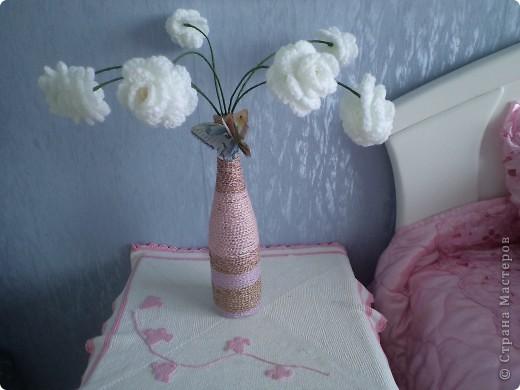 Любимый кактус! фото 6