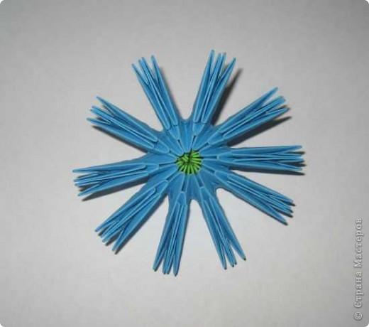 Для изготовления одного цветка василька вам потребуется: 70 голубых, 10 синих и 10 зеленых треугольных модулей и для сердцевинки цветка 1 модуль кусудамы синего цвета. фото 6