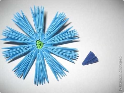 Для изготовления одного цветка василька вам потребуется: 70 голубых, 10 синих и 10 зеленых треугольных модулей и для сердцевинки цветка 1 модуль кусудамы синего цвета. фото 10