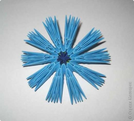 Для изготовления одного цветка василька вам потребуется: 70 голубых, 10 синих и 10 зеленых треугольных модулей и для сердцевинки цветка 1 модуль кусудамы синего цвета. фото 11