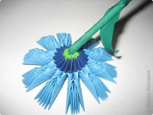 Для изготовления одного цветка василька вам потребуется: 70 голубых, 10 синих и 10 зеленых треугольных модулей и для сердцевинки цветка 1 модуль кусудамы синего цвета. фото 17