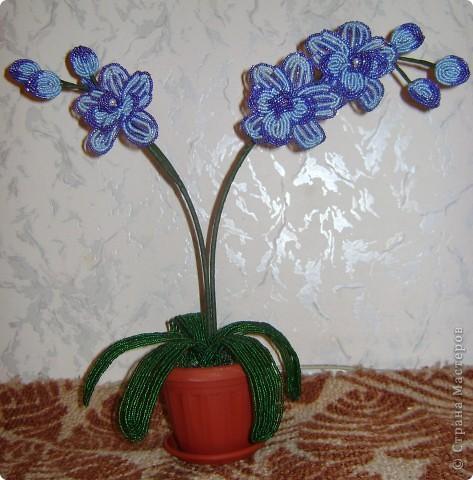 Орхидейка для мамы фото 1