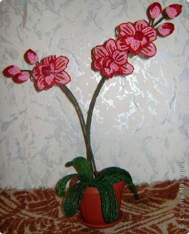 Орхидейка для мамы фото 3