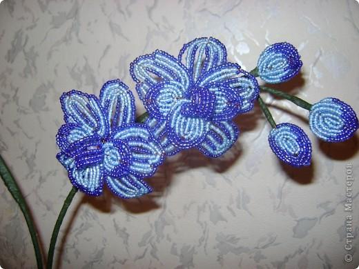 Орхидейка для мамы фото 2