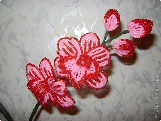 Орхидейка для мамы фото 4