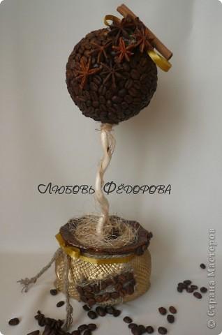 Всем привет!!!!!!!!!! Хочу показать вам кофейные работы... три топиария и 2 фото рамки. Кофейные деревца..цветущие фото 12