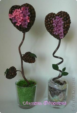 Всем привет!!!!!!!!!! Хочу показать вам кофейные работы... три топиария и 2 фото рамки. Кофейные деревца..цветущие фото 7