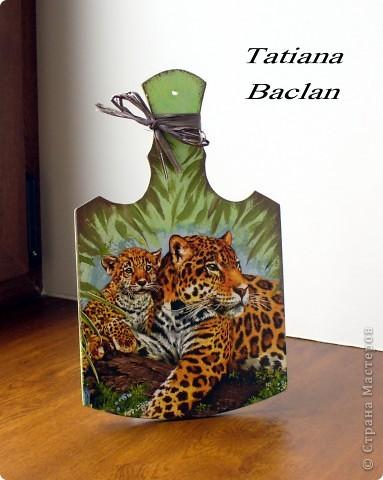 Леопарды фото 3