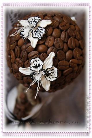 Кофейный топиарий  фото 5