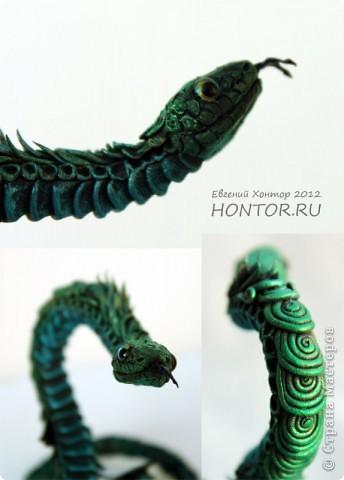 Змея Сверкающая фото 4