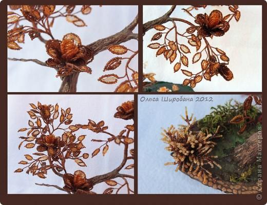 Осенние грезы фото 3