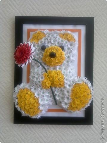 цветочный мишка фото 1