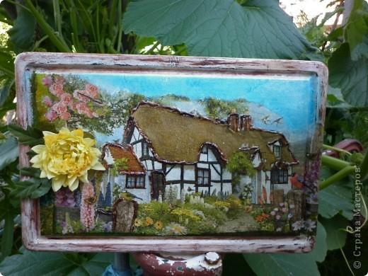 Домашний сад фото 1