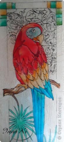 Вот такой попугайчик у меня нарисовался)это фото со вспышкой фото 2