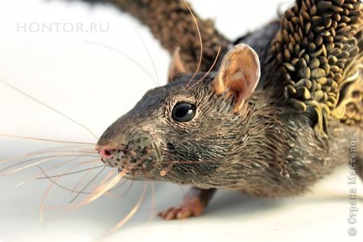 """Крыса Пантерка. Портретная крысь, и вроде бы даже получилась похожей на """"оригинал"""") фото 1"""