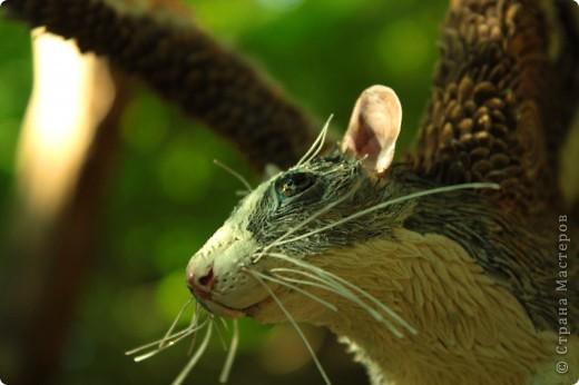 """Крыса Пантерка. Портретная крысь, и вроде бы даже получилась похожей на """"оригинал"""") фото 16"""