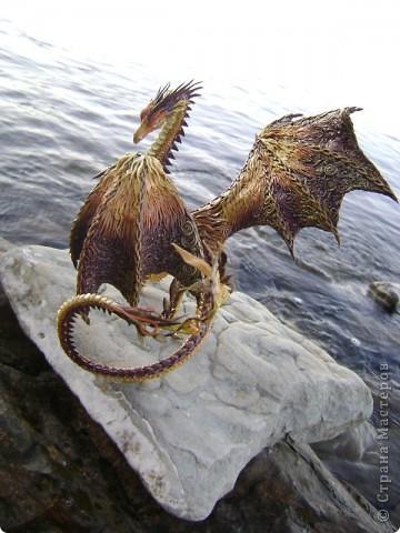 """Выставляю большую драконью подборку - кое-кто уже мелькал здесь, но большинство впервые """"засветились"""" в Стране Мастеров.  Не могу не начать с Рихарда. Он для меня все же особенный дракон. Основатель Луарилльского Гнезда, его бессменный лидер.   *** Истинный дракон благоволит мудрости и порицает глупость. Уважает жажду знаний и презирает суеверия. Он может обладать магическими силами, но твердо знает, что мир прекрасен и без магии. *** (с) Дракон Рихард фото 1"""
