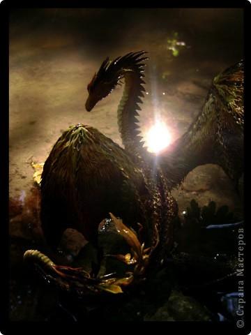 """Выставляю большую драконью подборку - кое-кто уже мелькал здесь, но большинство впервые """"засветились"""" в Стране Мастеров.  Не могу не начать с Рихарда. Он для меня все же особенный дракон. Основатель Луарилльского Гнезда, его бессменный лидер.   *** Истинный дракон благоволит мудрости и порицает глупость. Уважает жажду знаний и презирает суеверия. Он может обладать магическими силами, но твердо знает, что мир прекрасен и без магии. *** (с) Дракон Рихард фото 3"""