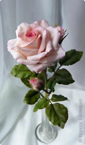 Вот такое розовое настроение у меня было... и вот что из этого получилось. Все цветы слеплены из готовых полимерных глин(холодный фарфор) modern clay, luna clay, Thai clay. фото 16