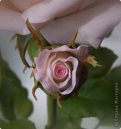 Поделка изделие 8 марта Валентинов день День рождения День учителя Свадьба Лепка розовое настроение  Фарфор холодный фото 15