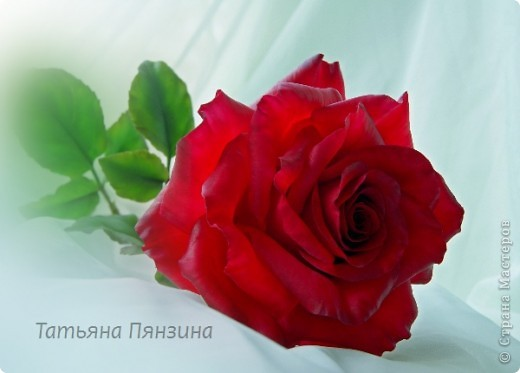 Поделка изделие 8 марта Валентинов день День рождения День учителя Свадьба Лепка розовое настроение  Фарфор холодный фото 20