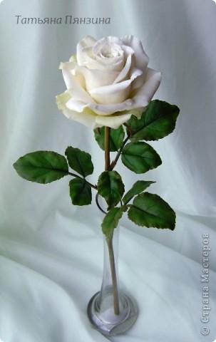 Вот такое розовое настроение у меня было... и вот что из этого получилось. Все цветы слеплены из готовых полимерных глин(холодный фарфор) modern clay, luna clay, Thai clay. фото 17