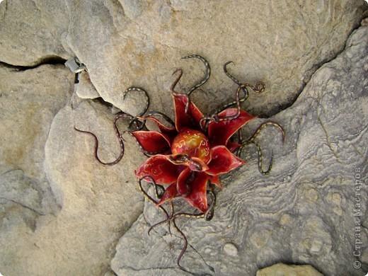 Чтобы уже закрыть тему драконов) Немного о Хаарагах - драконах Луарилла.  Цвет Хаарагов - красный. Их месяц - хааргин - похож на задумчивое пламя - жаркий, сухой, и в то же время жар не иссушает землю, но кажется иллюзией. Иллюзией танцующего рубинового пламени. Кровь Хаарагов превращается в живой Рубин – этот камень способен воскрешать умерших, в творении он – первый камень, замысел мира. фото 2