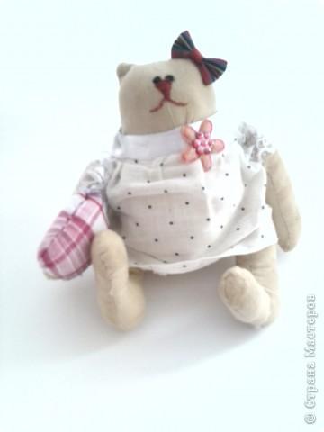 Вот такой вот котик,точнее кошечка сшилась у меня за три дня.Сначала хотела сделать ей платьешко, но потом,посмотрев поняла,что это-ночная рубашка.По такому случаю приделала еще и подушку. Пускай дама в пижаме охраняет наши сны! фото 1