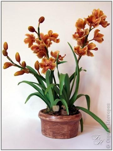 Орхидея цимбидиум. Пожалуй, на сегодняшний момент из всех своих работ эту я полюбила больше всех (хотя и она не без недостатков)))) Ну, и еще ванду))) фото 1