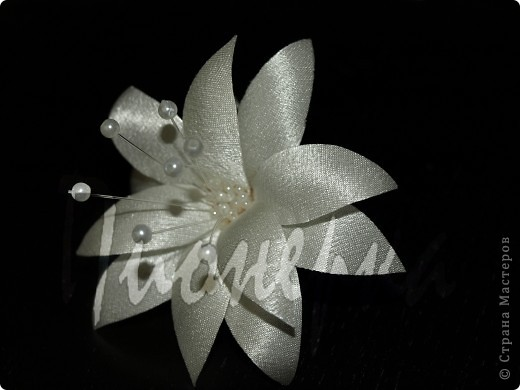 Эту розу я сделала так :разобрала  живую розу на лепестки, выбрала  самые красивые и сделала с них лекала. фото 2