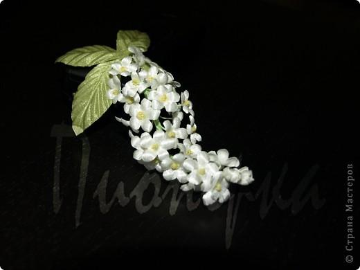 Эту розу я сделала так :разобрала  живую розу на лепестки, выбрала  самые красивые и сделала с них лекала. фото 4