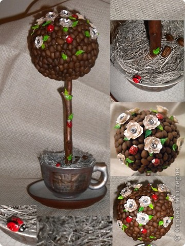 Нашла еще несколько фотографий моих работ. Кофейный топиарий (кофе,пластика,сизаль). фото 1