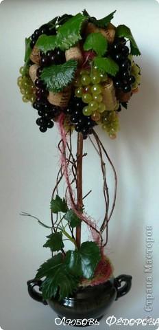Ух, всё, закончились запасы пробок и винограда))) Вырастила, очередное, виноградное! фото 1
