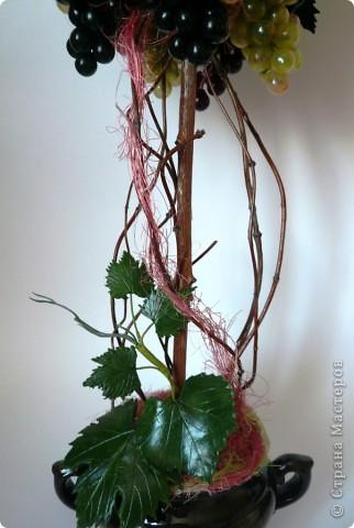 Ух, всё, закончились запасы пробок и винограда))) Вырастила, очередное, виноградное! фото 2