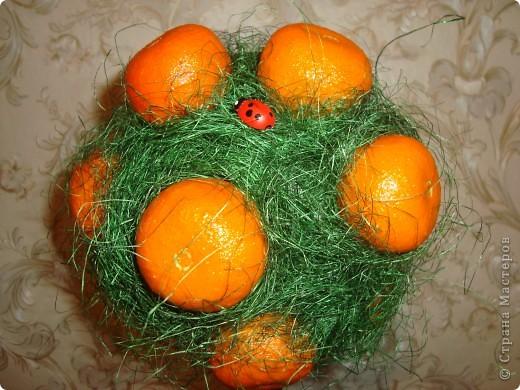 Моё мандариновое деревце))) фото 2