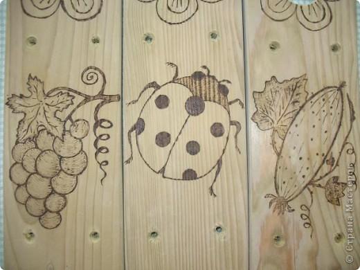 Муж выпилил колышки, я решила украсить.  Рисунки решила сделать разными. Итак: вишенки, бабочка, шишка... фото 3