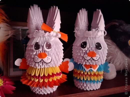 Мои зайчата.