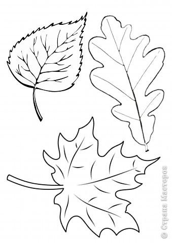 Праздник осени Вырезание Осенние листья Бумага фото 2.