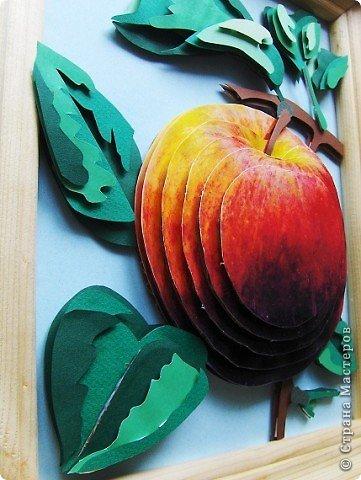 Яблоко фото 2