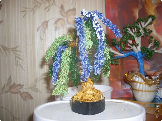 фиалки голубые фото 3