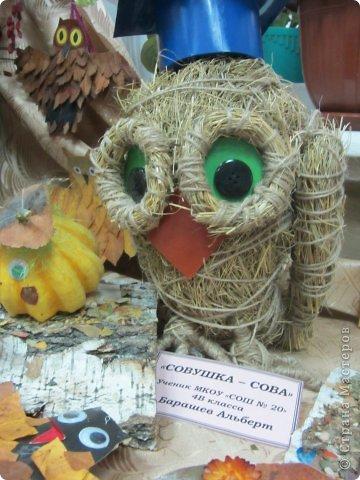 Каждый год на базе Станции юных натуралистов в городе проходит выставка поделок из природного материала. фото 2