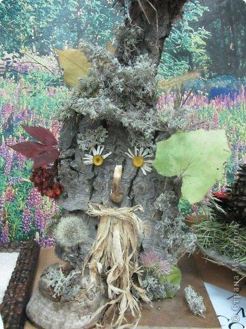 Каждый год на базе Станции юных натуралистов в городе проходит выставка поделок из природного материала. фото 9