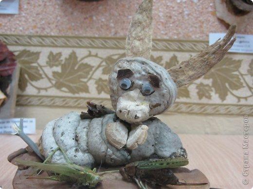 Каждый год на базе Станции юных натуралистов в городе проходит выставка поделок из природного материала. фото 13