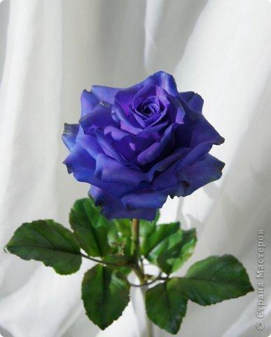Поделка изделие 8 марта Валентинов день День рождения День учителя Свадьба Лепка розовое настроение  Фарфор холодный фото 21