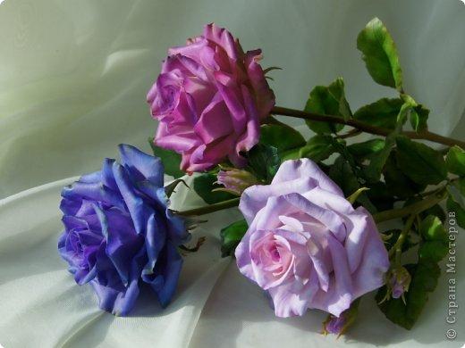 Вот такое розовое настроение у меня было... и вот что из этого получилось. Все цветы слеплены из готовых полимерных глин(холодный фарфор) modern clay, luna clay, Thai clay. фото 24