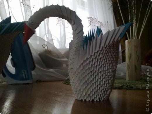 Это мой первый лебедь, не судите строго фото 6