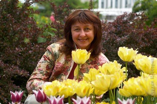 Тюльпаны и прочие цветочки фото 2