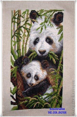 """Риолис 1159 """"Панда с детенышем"""""""