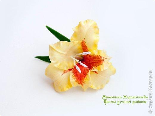 И снова здравствуйте. На этот раз хочу показать сборку цветочков-украшений с гладиолусами. Начну, пожалуй, с мутанта болотного )) фото 8